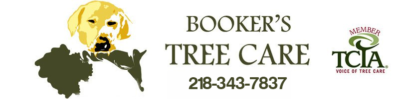 Bookers Tree Care Logo and Phone Number of 218-343-7837